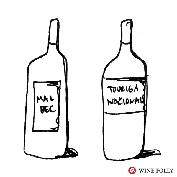 Look to bolder varieties like malbec and Touriga Nacional with Barbecue Chicken Pizza - Illustration Bottle Wine Folly