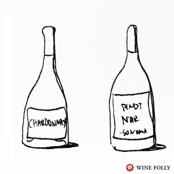 Pinot Noir and Chardonnay work really well with an all white pizza - bottle illustration Wine Folly