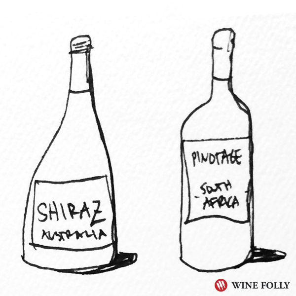 Pinotage and Shiraz goes well with Sausage Pizza - illustration Wine Folly