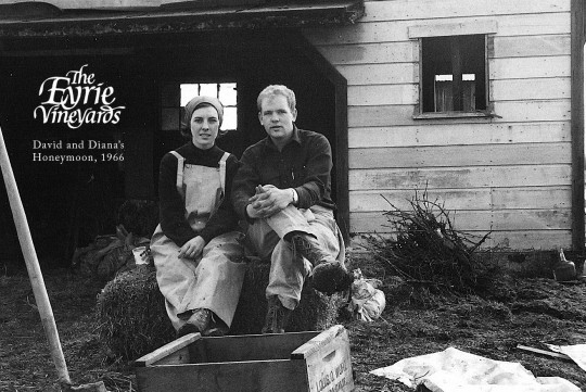 First Oregon Pinot: David and Diana Lett plant Pinot Noir in Dundee Hills in 1965