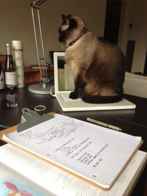 Cat Laptop Wine and Notebook