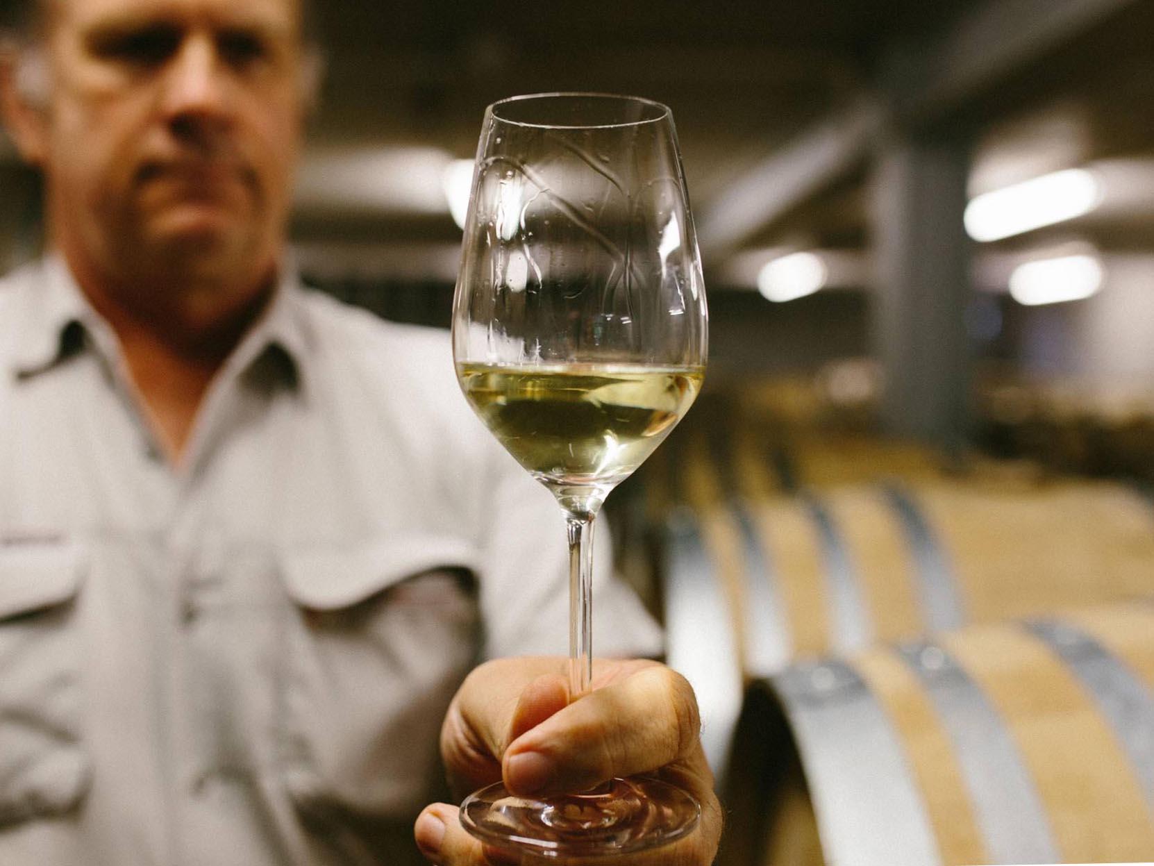 nz-mbrajkovich-master-of-wine