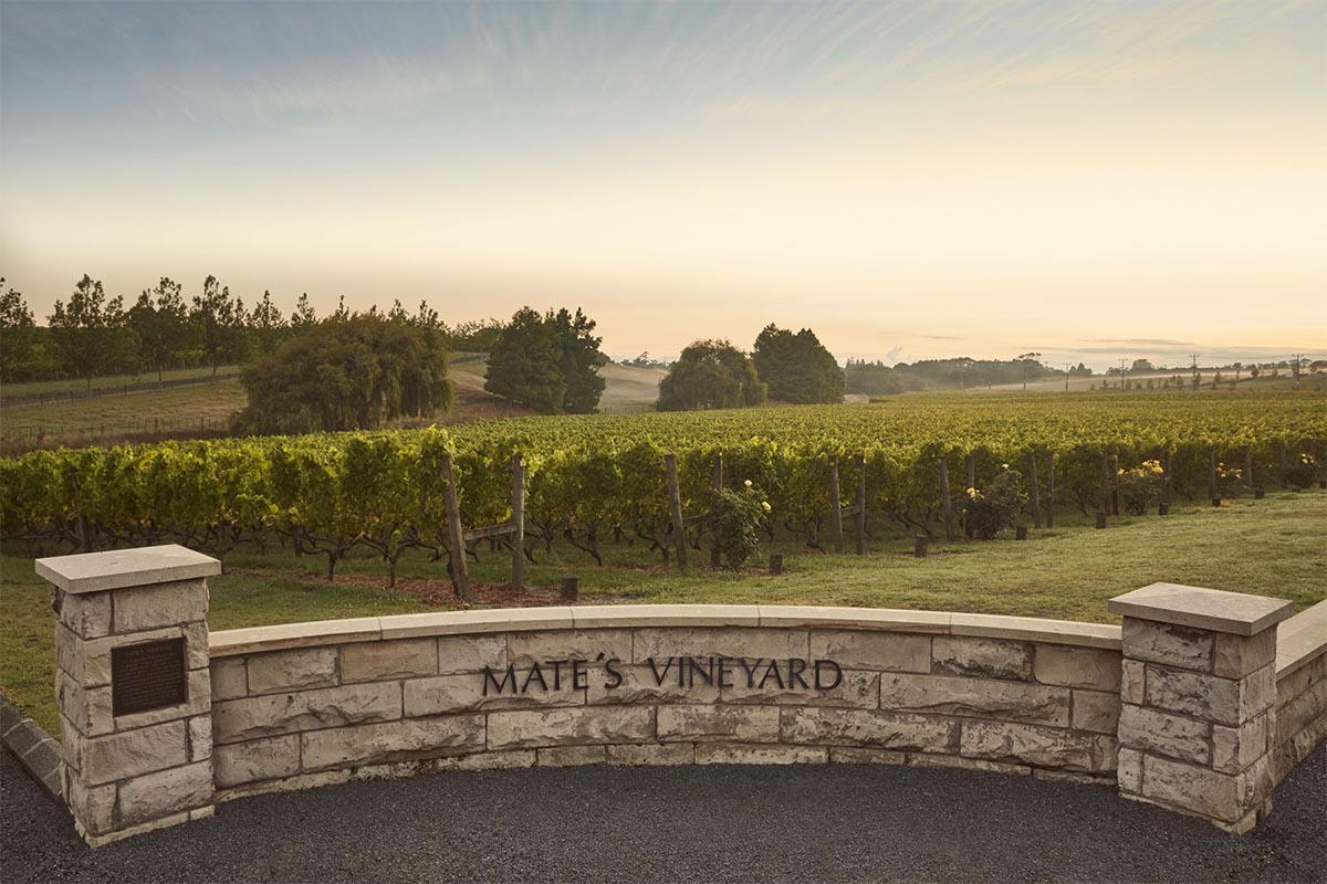 nz-mates-vineyard-auckland