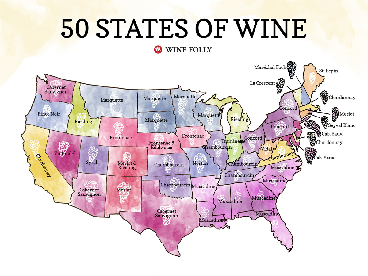 Us Wine Regions Map 50 States of Wine (Map) | Wine Folly