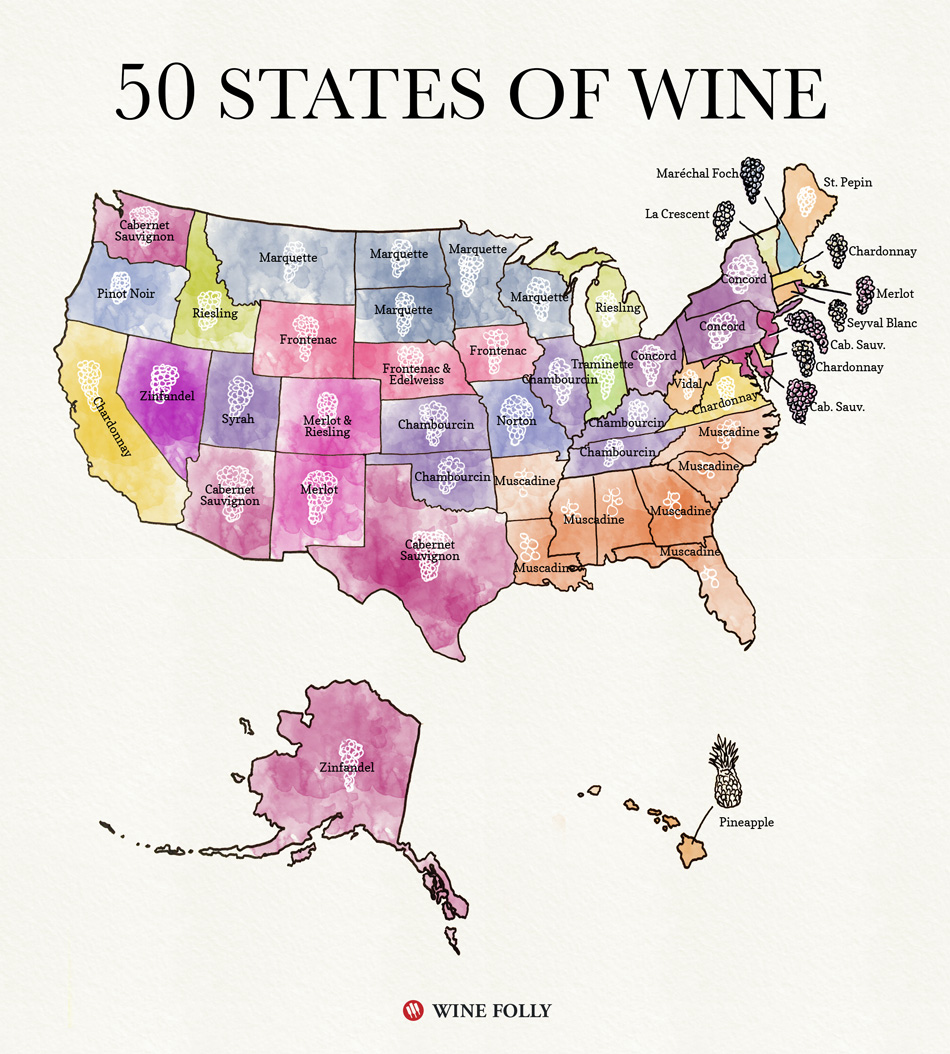 50 States of American Wine Map by Wine Folly