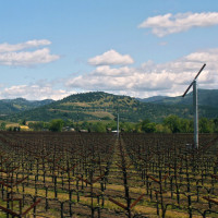 Windmills or fans in vineyards