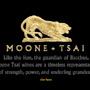 moone-tsai