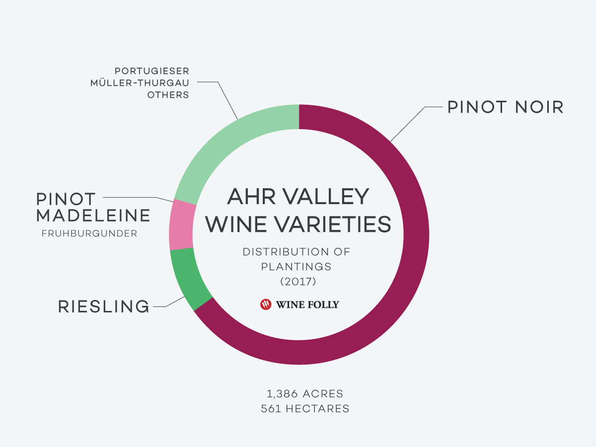 Ahr-Valley-Vineyard-Grapes-Distribution-WineFolly