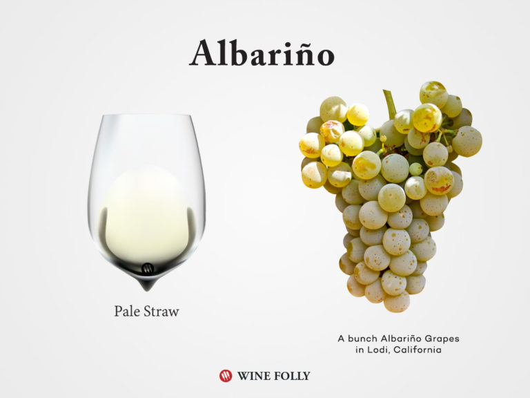 Albarino grapes and Albarino wine in a glass by Wine Folly 2017