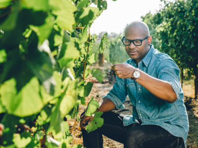 André Hueston Mack in Vineyards Photo by https://sashphot