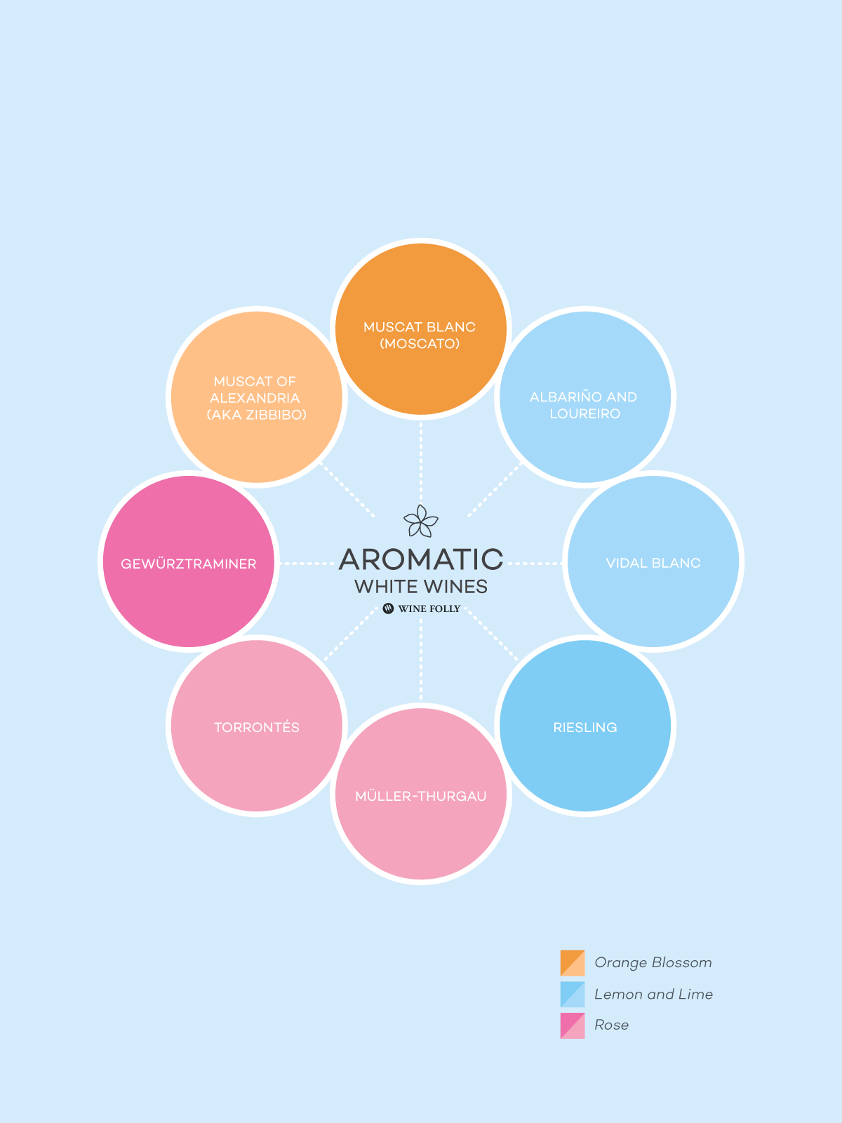 Aromatic White Wines by Wine Folly
