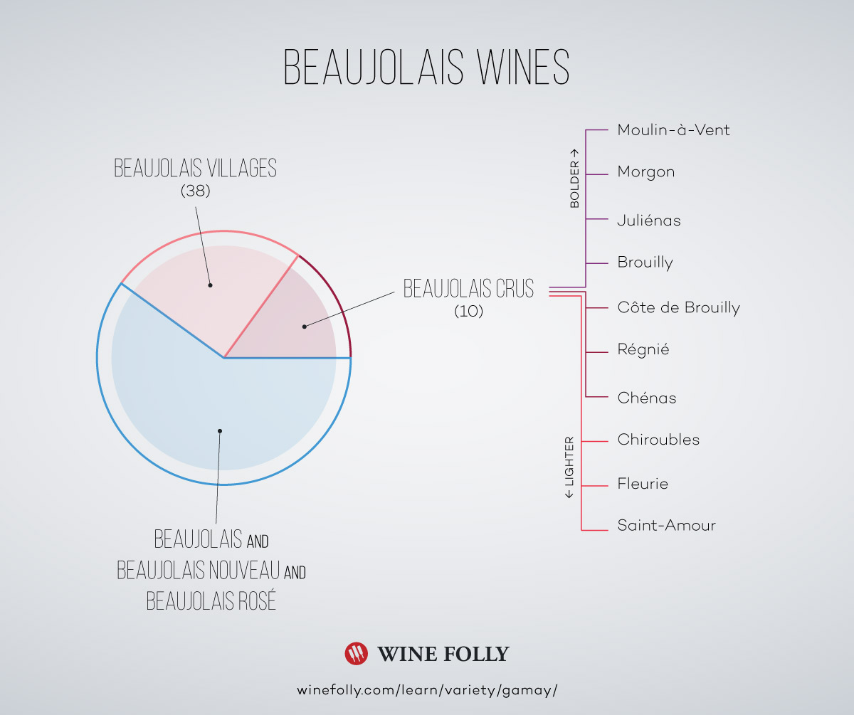 Beaujolais Wine Infographic by Wine Folly