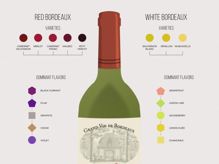 Bordeaux-Wine-Infographic-Wine-Folly-excerpt
