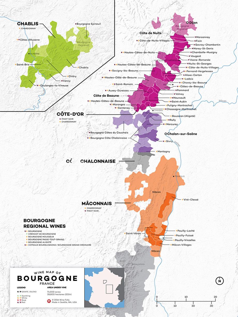 Burgundy Wine Map - Wine Folly - copyright 2016
