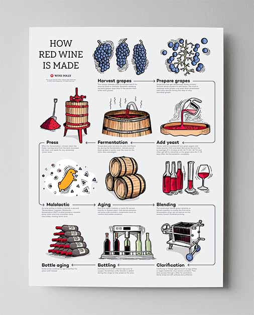 Wine Learning Accessories