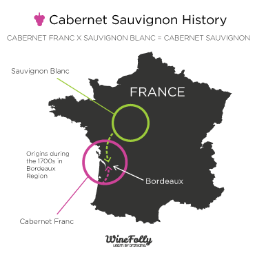 Cabernet-Sauvignon-Wine-History