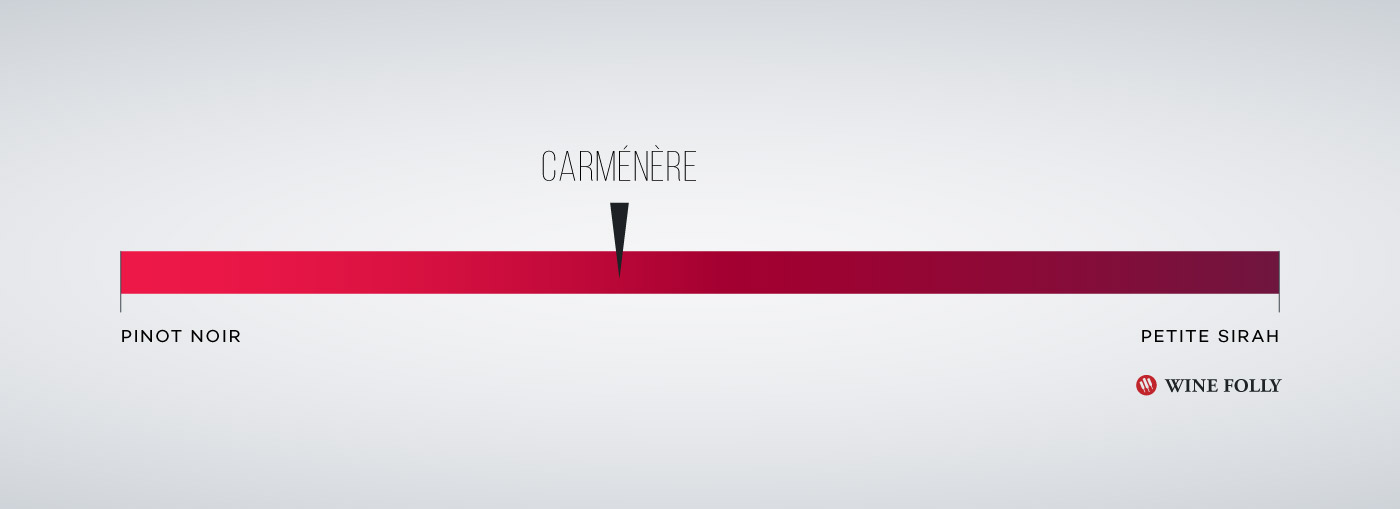 Carmenere Taste Comparison Profile by Wine Folly