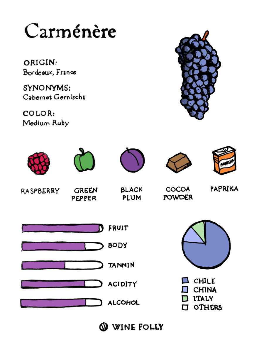 Carmenere taste profile illustration by Wine Folly