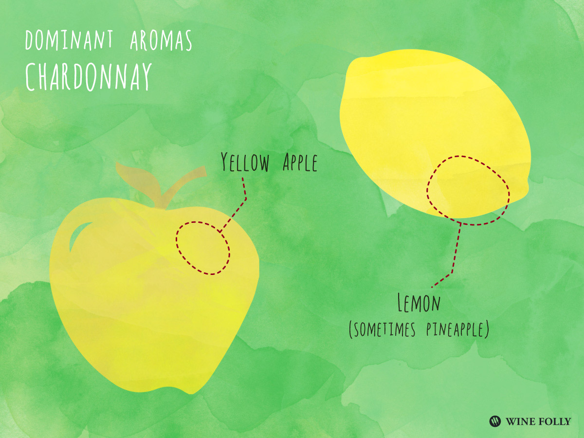 Dominant fruit flavors in Chardonnay wines by Wine Folly