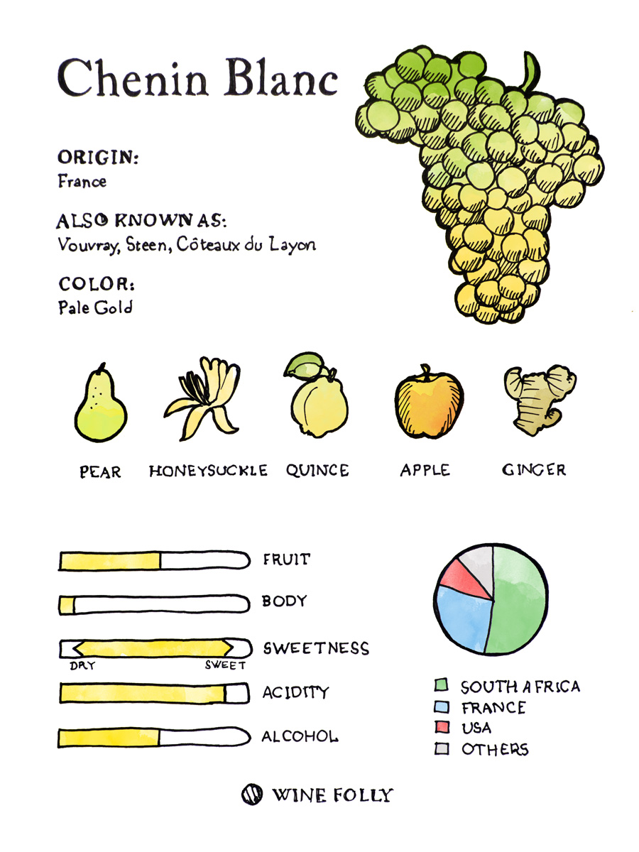 Chenin Blanc grapes illustration tasting profile by Wine Folly