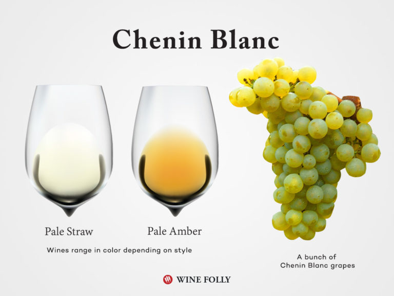 Chenin Blanc grapes and wine in glass with colors by Wine Folly