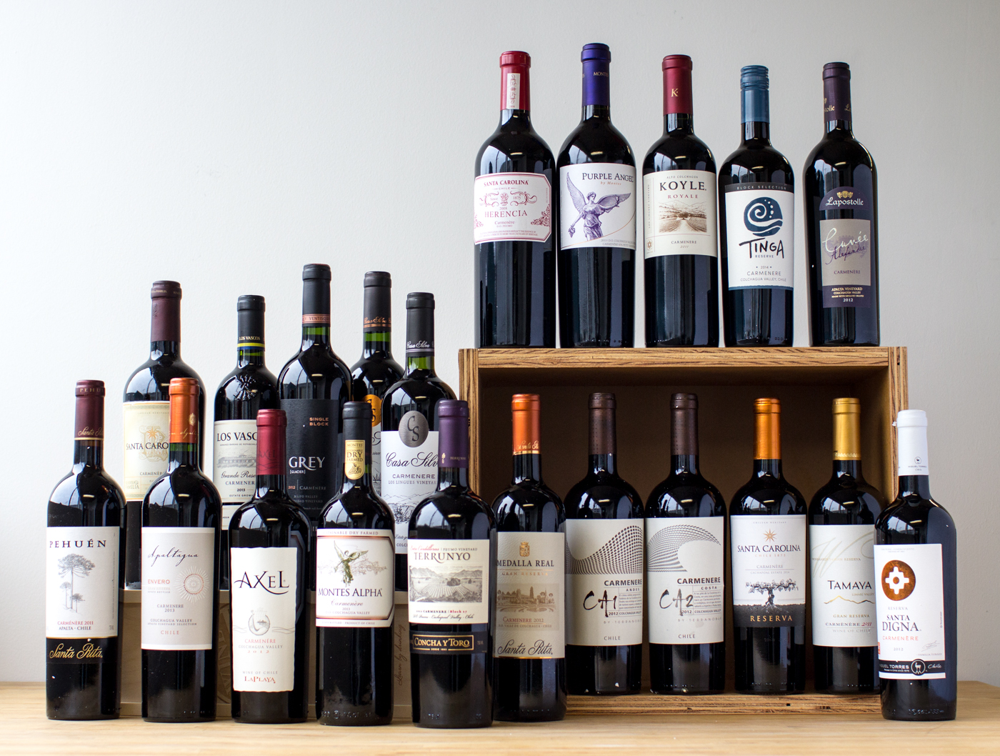 A selection of several of Chile's most well-known Carménère producers.