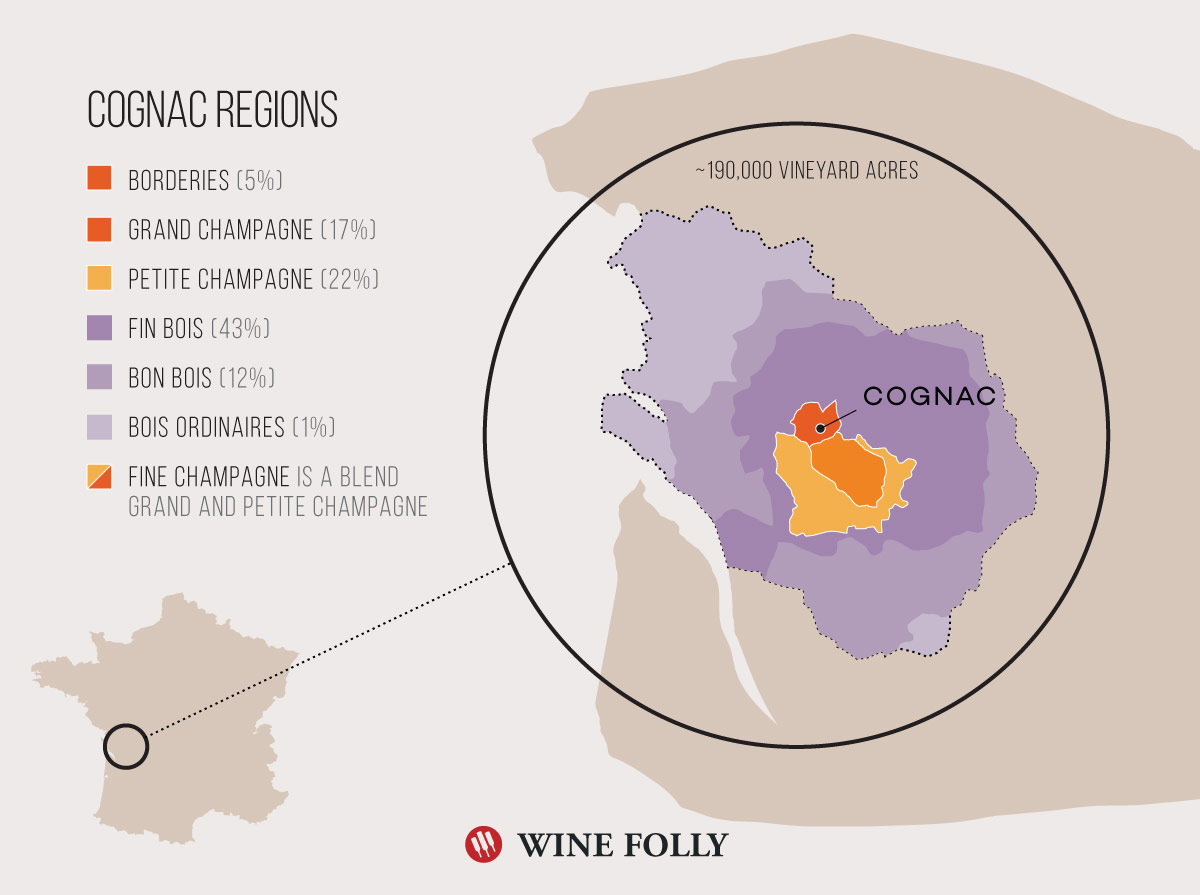 Cognac Region Wine Map by Wine Folly