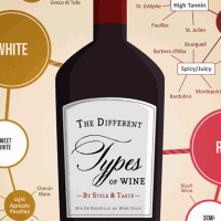 Different-Types-of-Wine-Infographic-excerpt