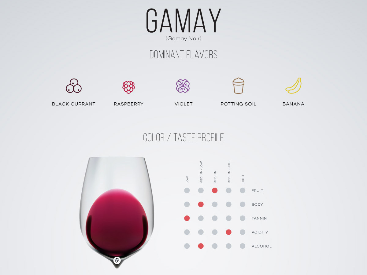 Gamay-Noir-Wine-in-a-glass-wine-folly