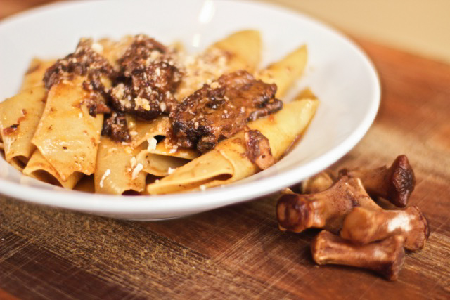 Garganelli Coda with Oxtail