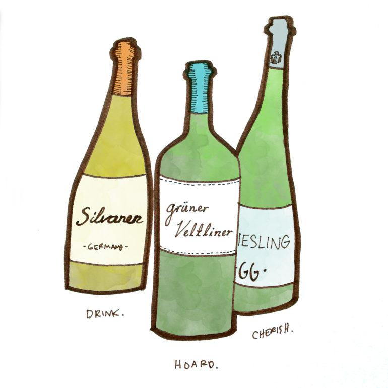 german-austrian-riesling-bottles-winefolly