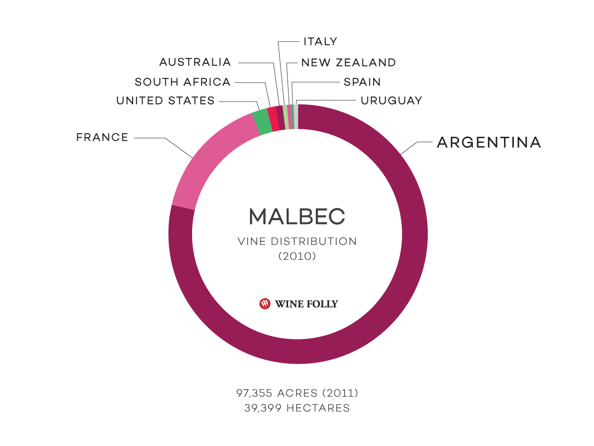 The Acres / hectares plantings of Malbec vineyards in the world - grape distribution infographic by Wine Folly
