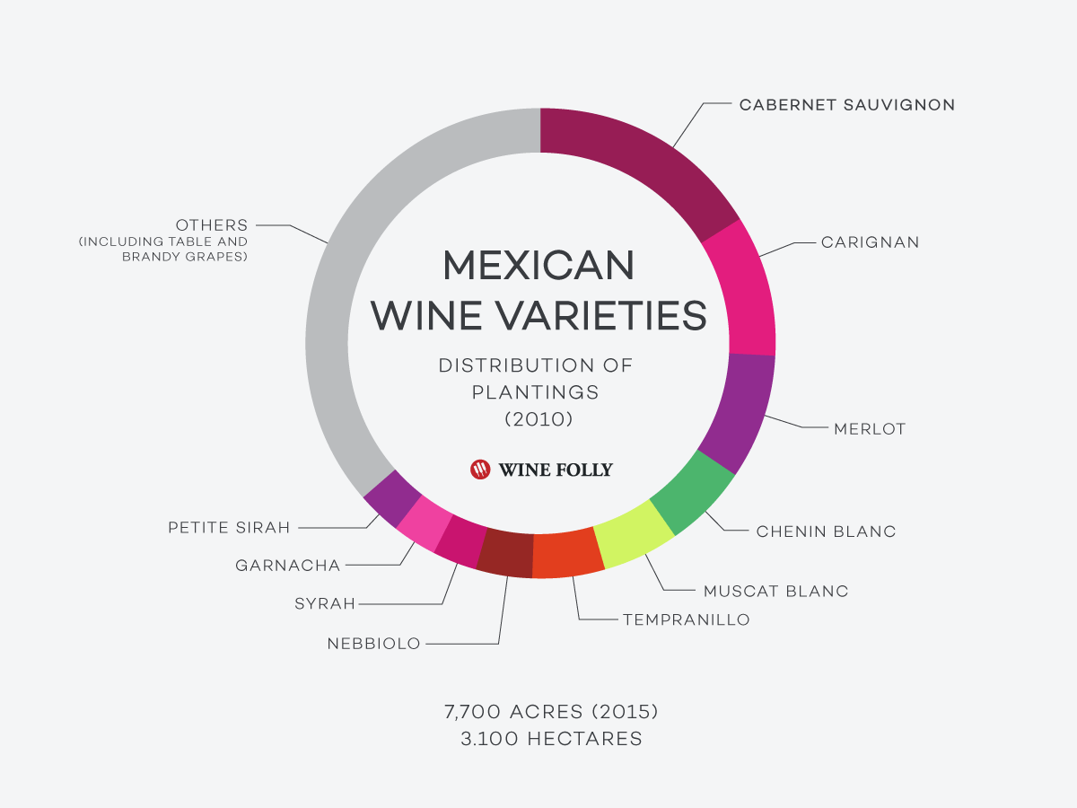 Wine grape statistics Mexico wine by Wine Folly