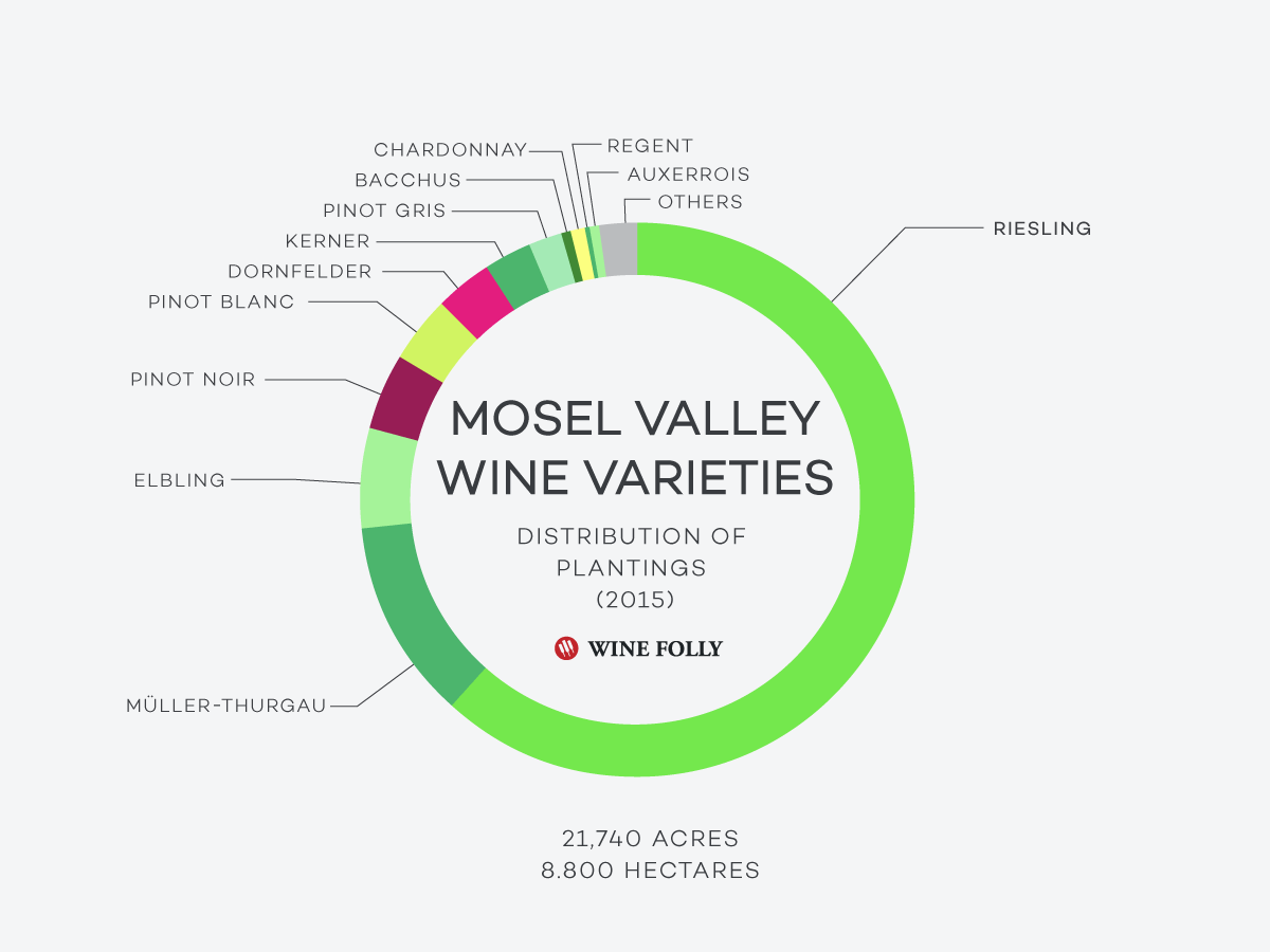 Grape-Distribution-Mosel-Valley-Wine-Folly