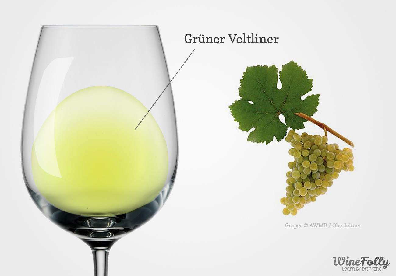 Gruner Veltliner wine glass with grapes