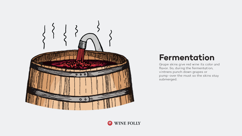 How-Red-Wine-Is-Made-fermentation