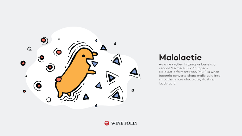 How-Red-Wine-Is-Made-malolactic