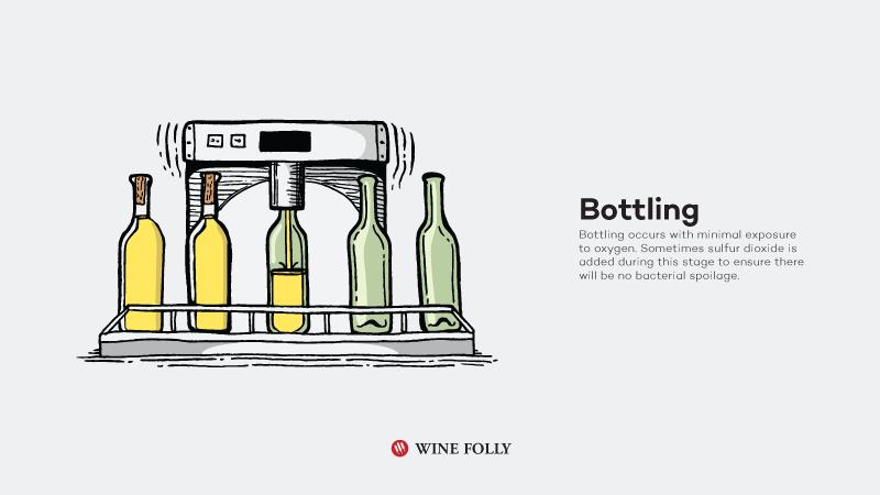 How-White-Wine-Is-Made-bottling