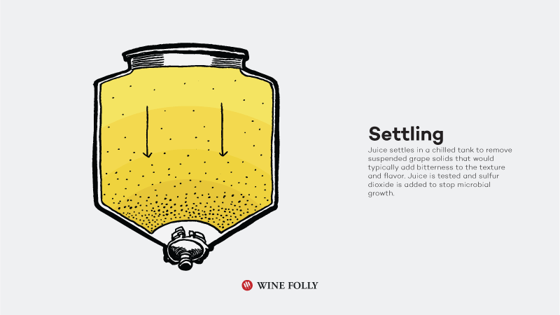 How-White-Wine-Is-Made-settling