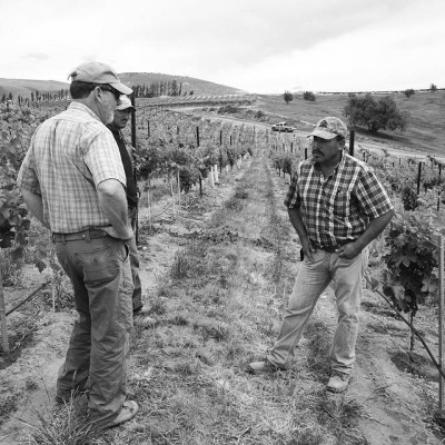 Emilio, the vineyard foreman at Elephant Mountain vineyards (WA). by Sam Kiersey