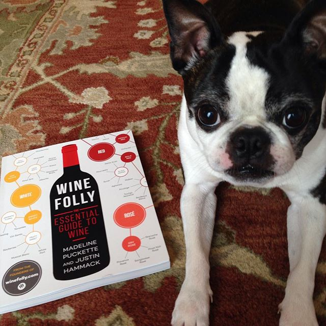 Even Javier is excited about @winefolly new #wine book. Even Javier is excited about @winefolly new #wine book. -marcypecoragordon