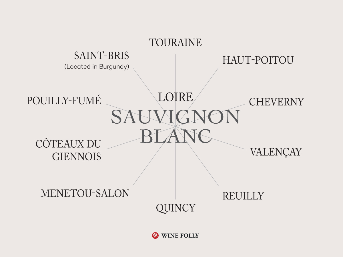Loire Valley Sauvignon Blanc Wines (plus Saint-Bris, in Burgundy) by Wine Folly