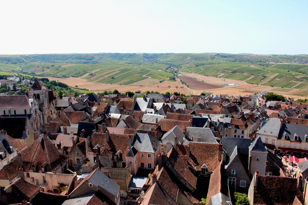 Loire-Valley-Wines-Vineyards-Sancerre2