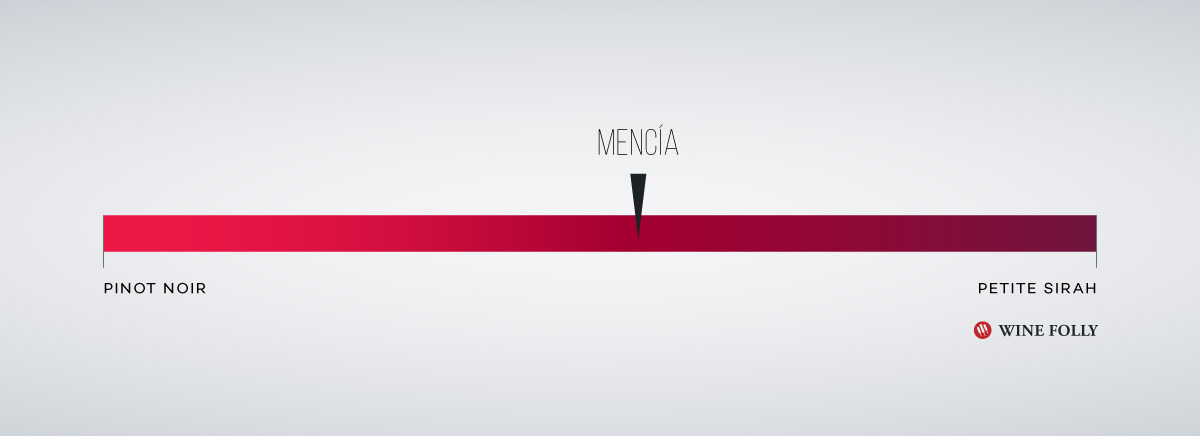 Mencia-on-the-boldness-scale-wine-folly
