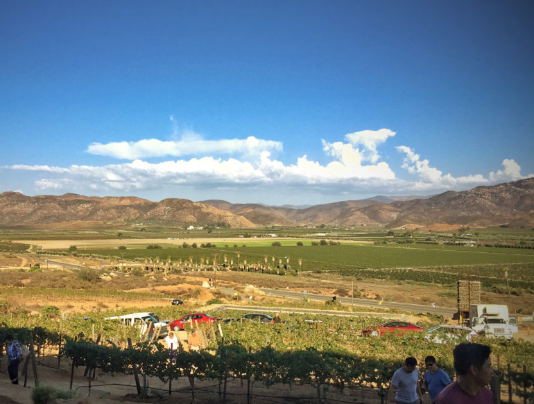 Mexico-wine-country-valle-de-guadalupe-ttseng