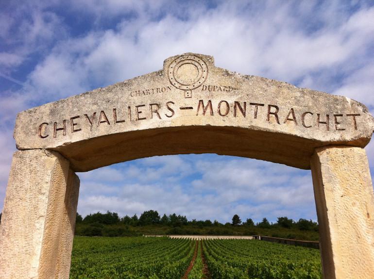 Montrachet-Burgundy-Yohan Castaing