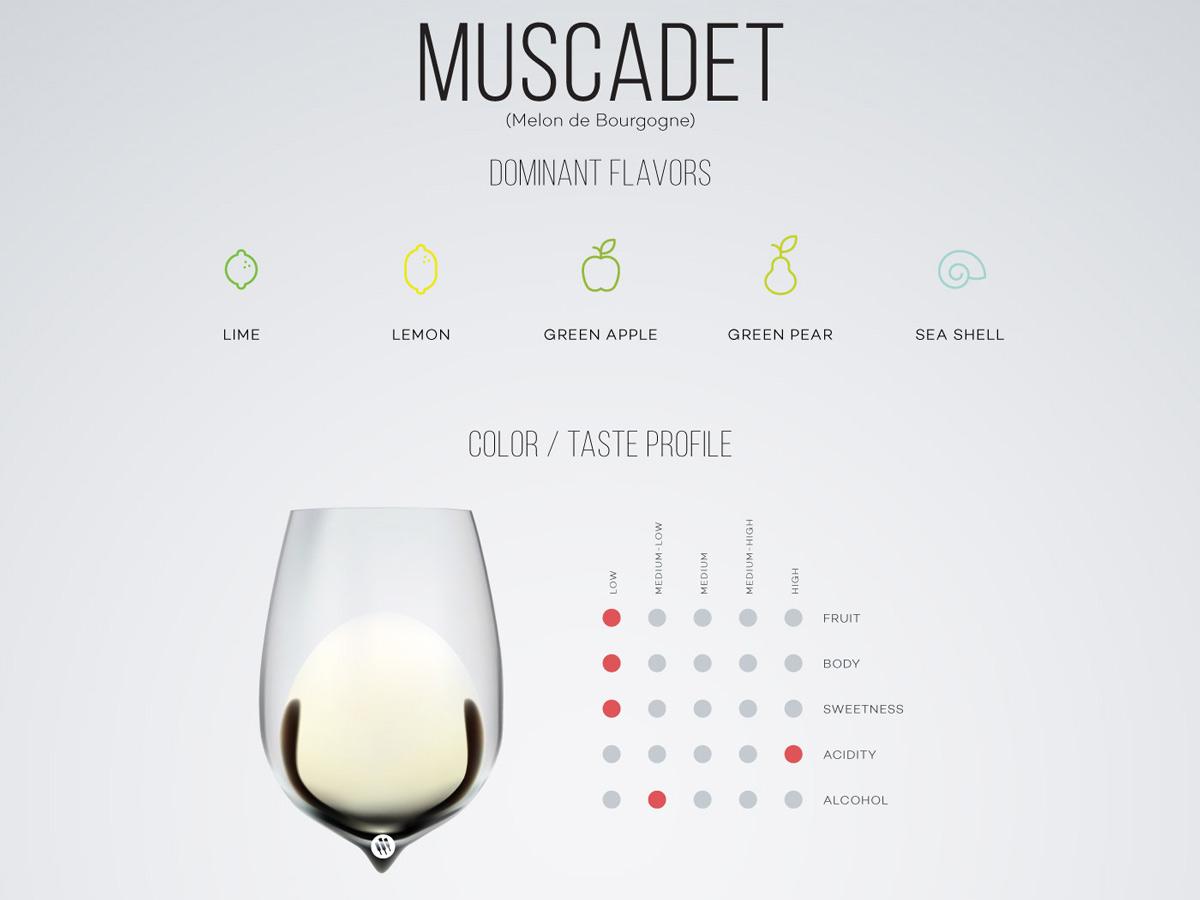 Muscadet-wine-taste-profile-excerpt