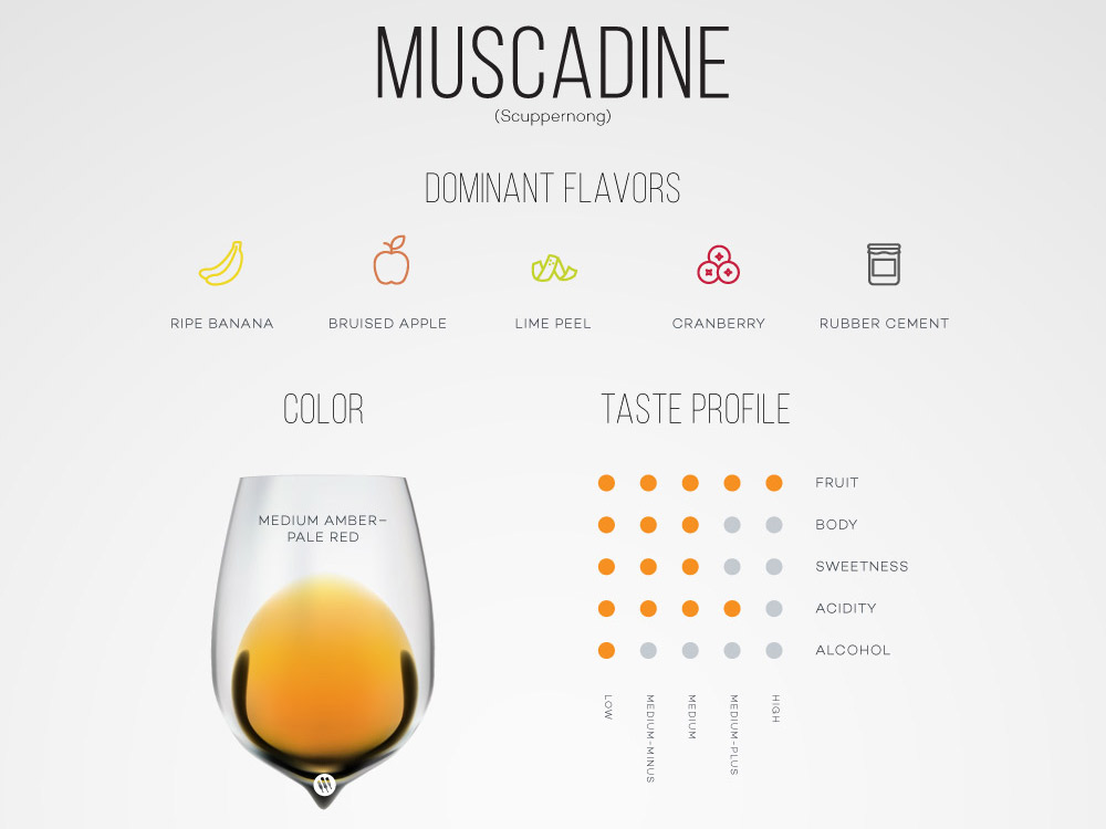 Guide to Muscadine Wine | Wine Folly
