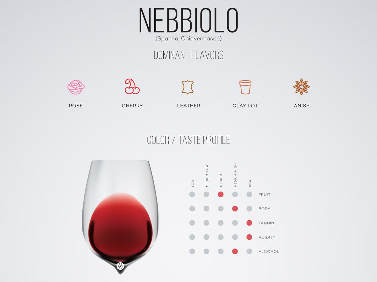Nebbiolo wine guide