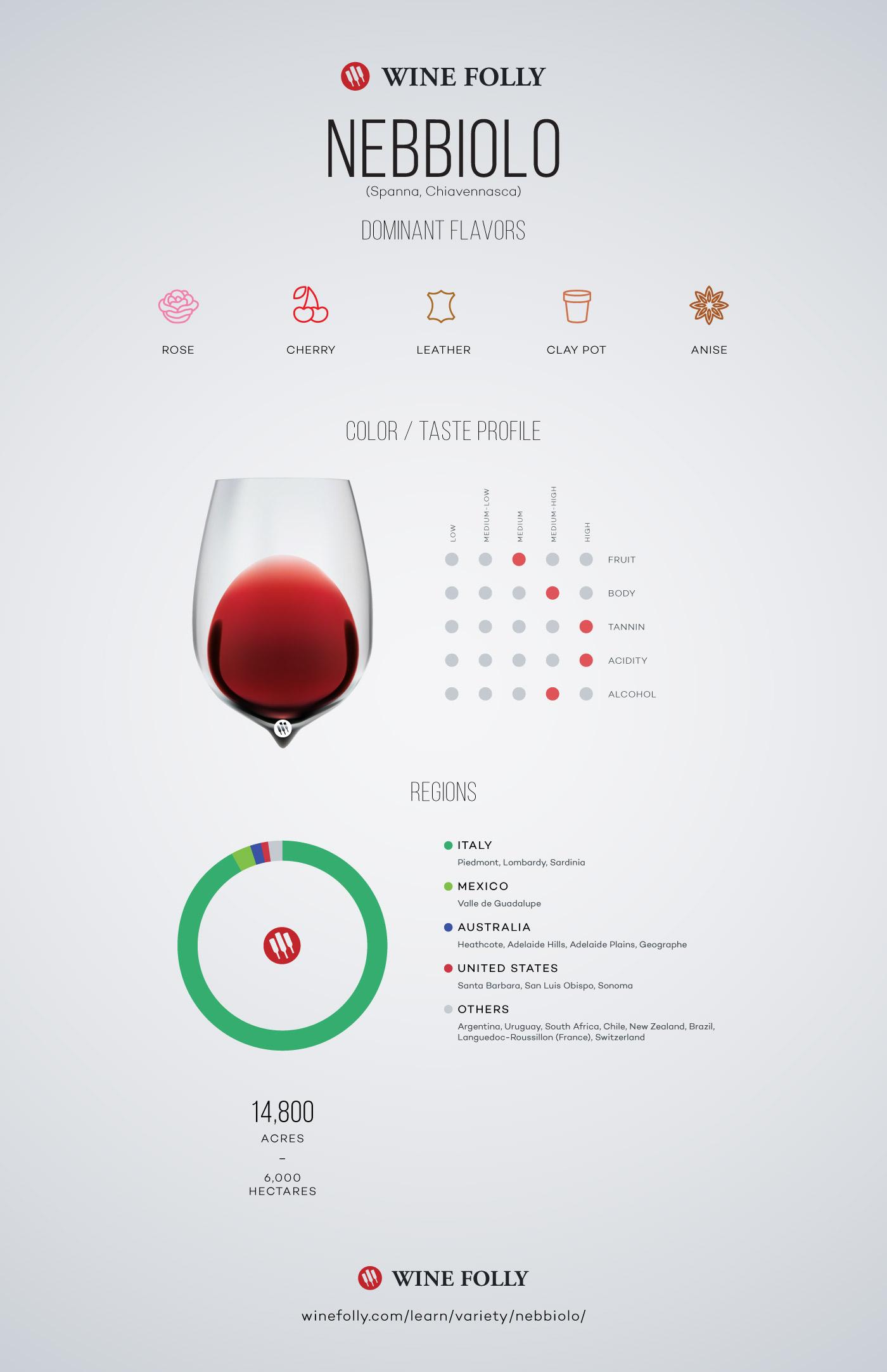 Nebbiolo Wine Profile by Wine Folly